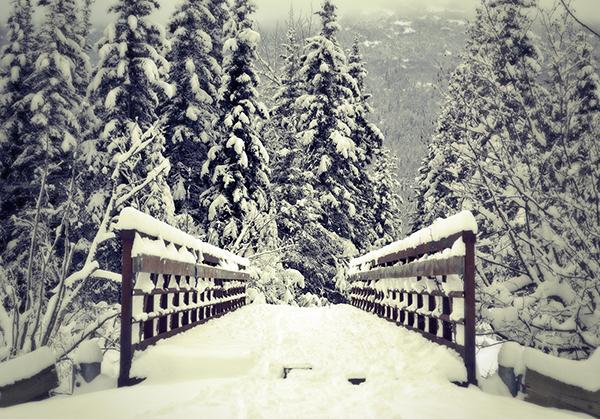 Snow Day landscape photoraphy