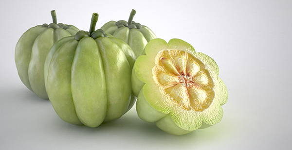 garcinia cambogia what fruit is it