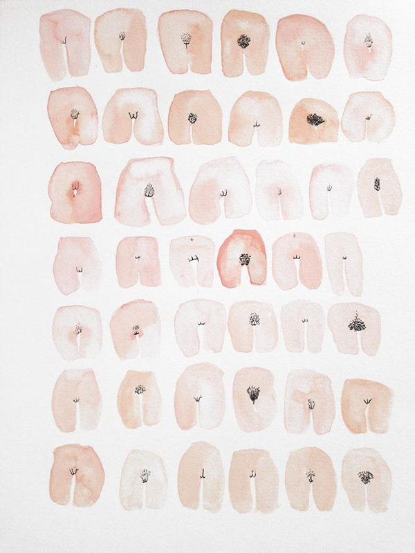 different types of vagina 42 vaginas 2014 on behance