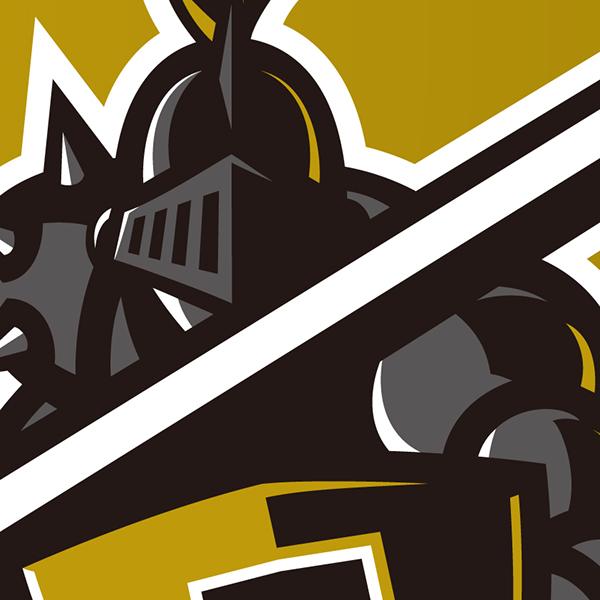 Army Black Knights ide...