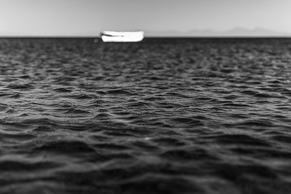 ice,fire,Coast,sea,desolate,black and white,water,ship,palm,Tree ,Palm Tree