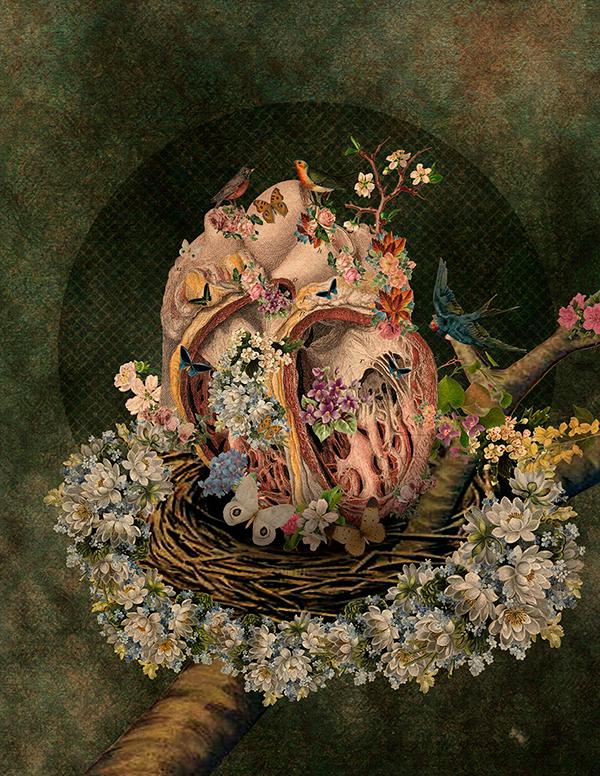 collage vintage anatomy human spring Flowers body collages art digitalart organs