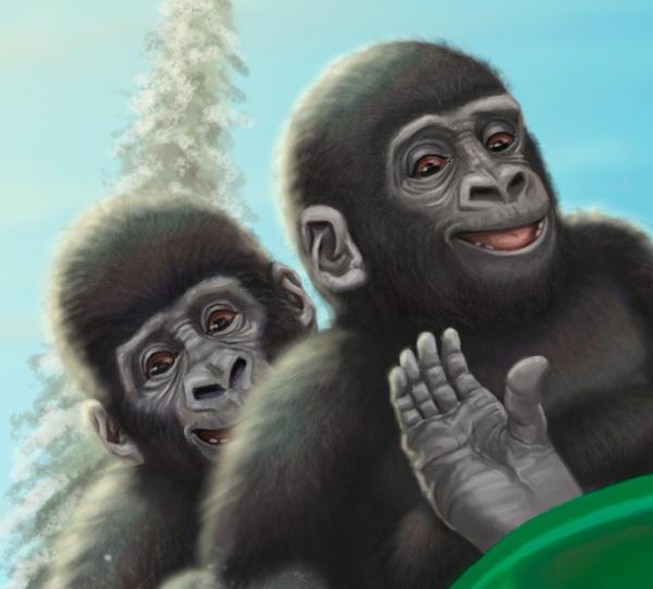 Gorillas sleigh riding gorilla sled