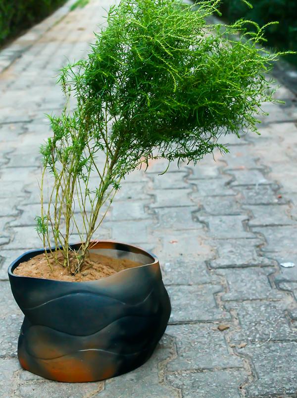 Terracotta - Planter