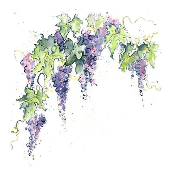 Green Grape Paint Color