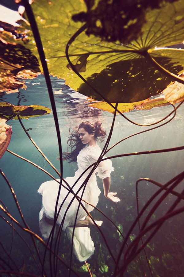 underwater  ilse moore  elsa bleda  bride  eyes  lillies  natural spring  water  wedding dress visual art