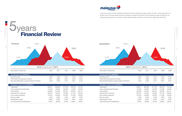 Malaysian Airlines Annual Report 2013