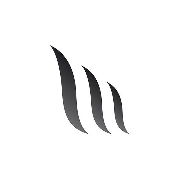 logo Logotype identity design mattia mesaglio