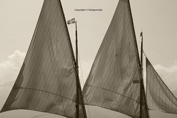 marine sailing bw sepia water lake