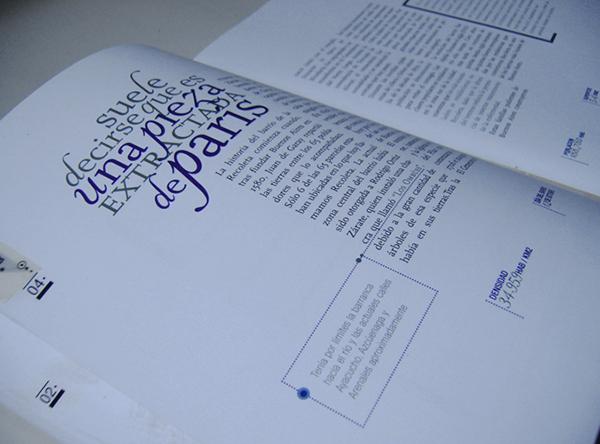 magazine editorial design  graphic design