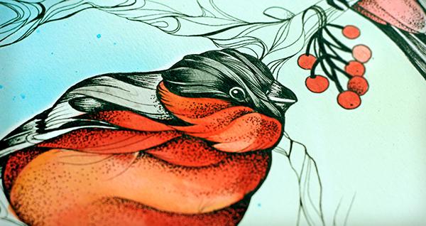 ink aquarel bullfinch bird