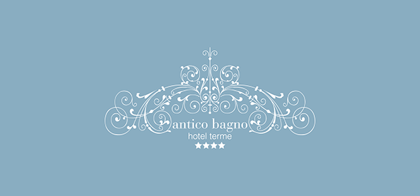 logo hotel corporate identity Web brand design thermal water Spa relax dolomites Italy alps snow