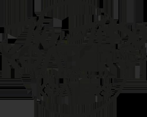 logotipo jiu jitsu things by koaters