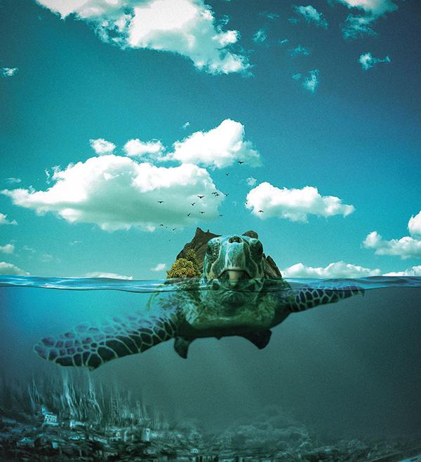 Dream Interpretation Turtle Swimming