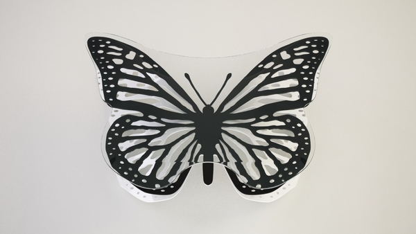 coffee table concept butterfly Butterfly coffee table concept Svilen Gamolov Varna bulgaria