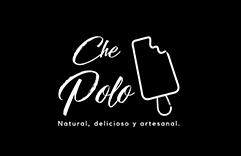 logo brand Website brand identity ice cream popsicle Advertising