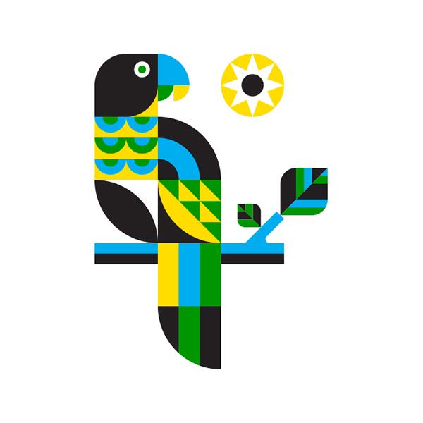 parrot bird animal jungle Sun Amazon rainforest Tropical modern minimal flat