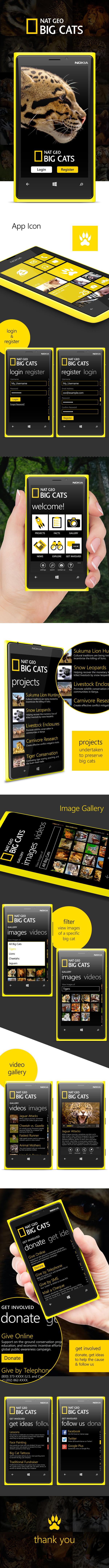 windows app UI ux NATGEO mobile animal wildlife application design Microsoft national geographic big cats Cat wild