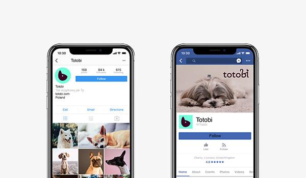 Totobi—visual identity &packaging for pet cosmetics
