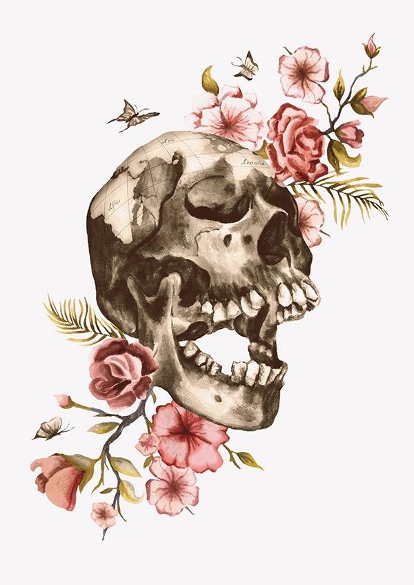 Flower Skull Illustration on Behance