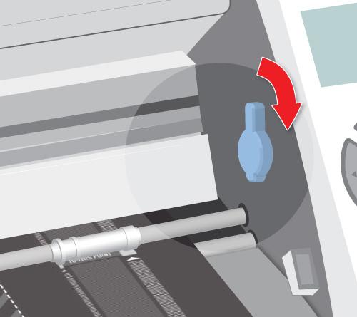 digital illustration illustrations computer drawing Illustrator