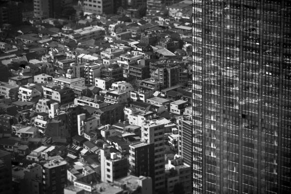 Ascaf japan Shibuza Shirazu