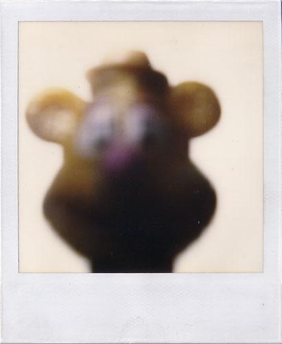 POLAROIDS 600 Polaroid Photography POLAROID instant film