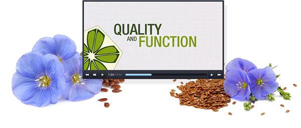 eco green Flax bioplastic