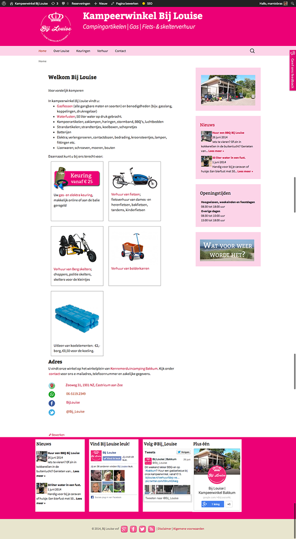 brand identity wordpress