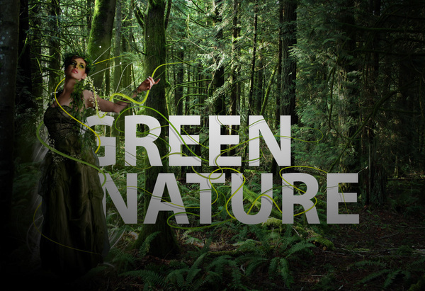 green Nature Global warming enviroment woods forest rain plants trees
