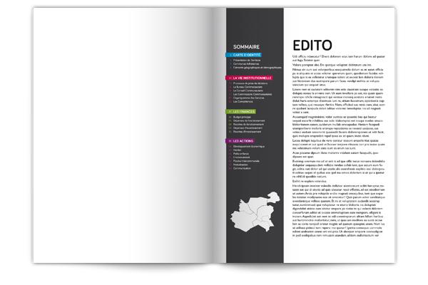rapport d'activité Infographie institutionnel