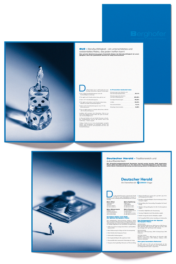 image brochure Consulting insurance
