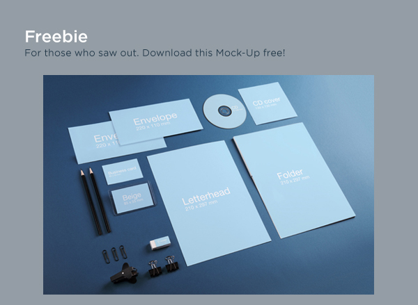 brand book identity design mock-up corporate style Corporate Identity iphone photo portfolio guideline Stationery free freebie