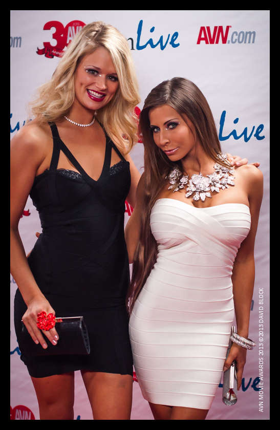 AVN Awards 2013 On Behance