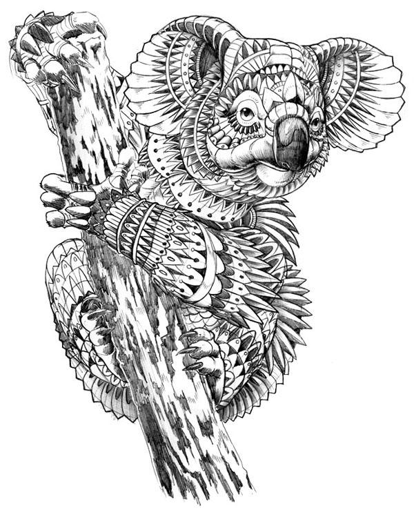 Kleurplaat Wolf Printen Ornate Koala On Behance