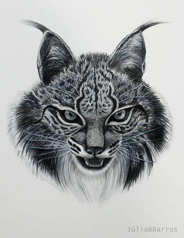 Desenho Animais Drawing Animals On Behance