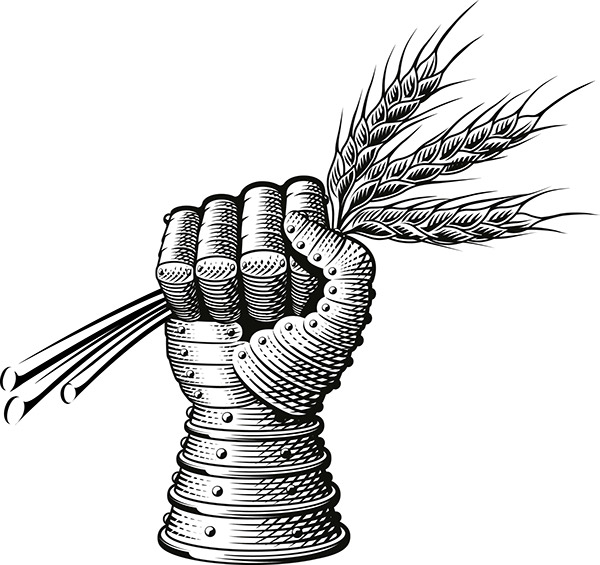 echlinville distillery logo illustration on behance
