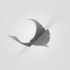 Drew Wheeler  Tim Jarvis BNTL Layout monogram minimal clean lilla ivory pallid White