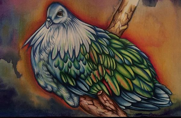 """""""Nicobar Pigeon"""" by Taryn Libby"""