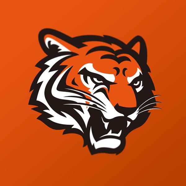 Cincinnati Bengals Identity Concept On Behance