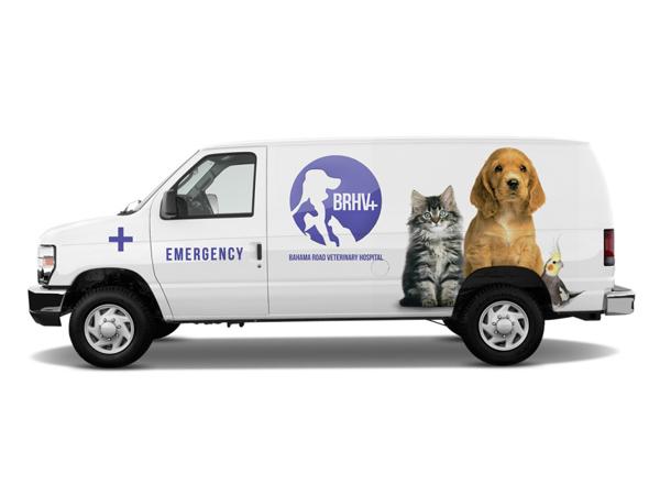 Brhv veterinary hospital on behance - Jacks smokehouse puerto banus ...