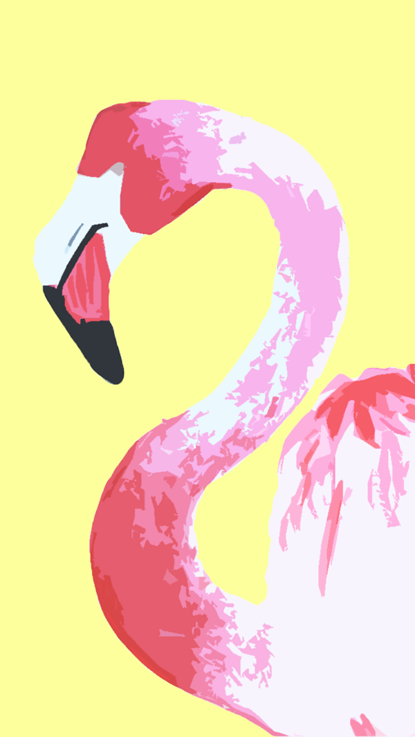 Обои с фламинго на рабочий стол