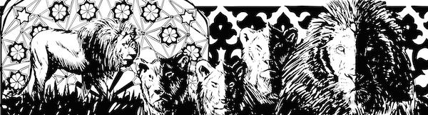 cutoutthedarkness2014 cutoutthedarkness animals lion b&w