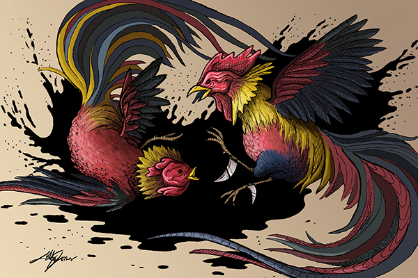 Cock fight on behance - Cock designing ...