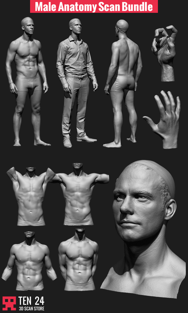 Male Scan Bundle On Behance