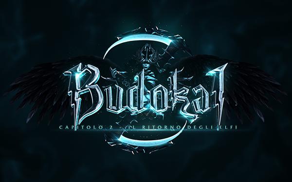 Game Logo - Budokai