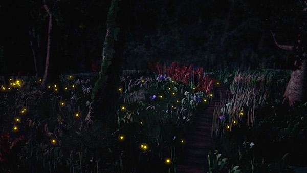 firefly 3ds max Landscape mental ray night Evening dark Flowers fireflies lightning bugs photoshop artofthepixel lg contest Nature