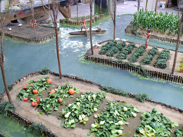 Aztec Chinampas Related Keywords - Aztec Chinampas Long ...