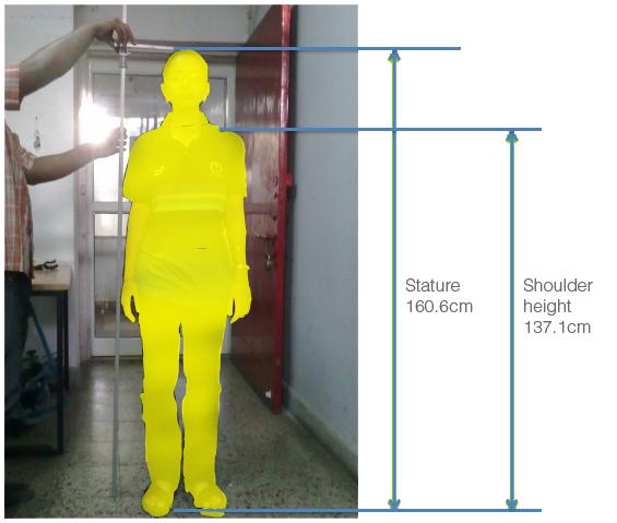 Ergonomics designing a door handle on pantone canvas gallery for Door design ergonomics