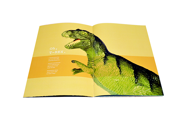 Dinosaur dino day t-rex kids color toys